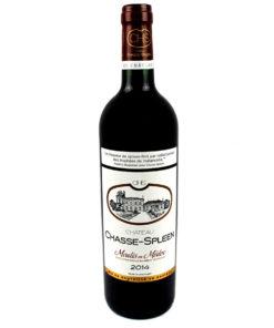 Vin de Bordeaux Chateau Chasse Spleen 2014
